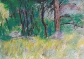 Trees_Boulders_Fontainebleau_sm