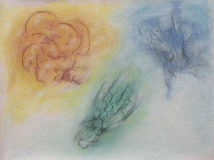 Fragmentation natural ochres, charcoal, ink, 23