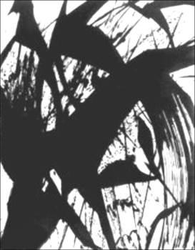 LeafSpirit_Framed