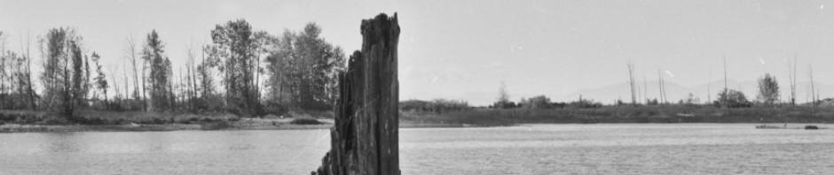 cropped-delta_megaliths.jpg