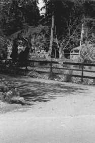 Ranch-3,  35mm Ilford 400 film, 1996.