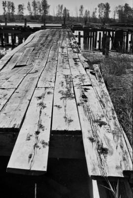 Walking_the_Plank